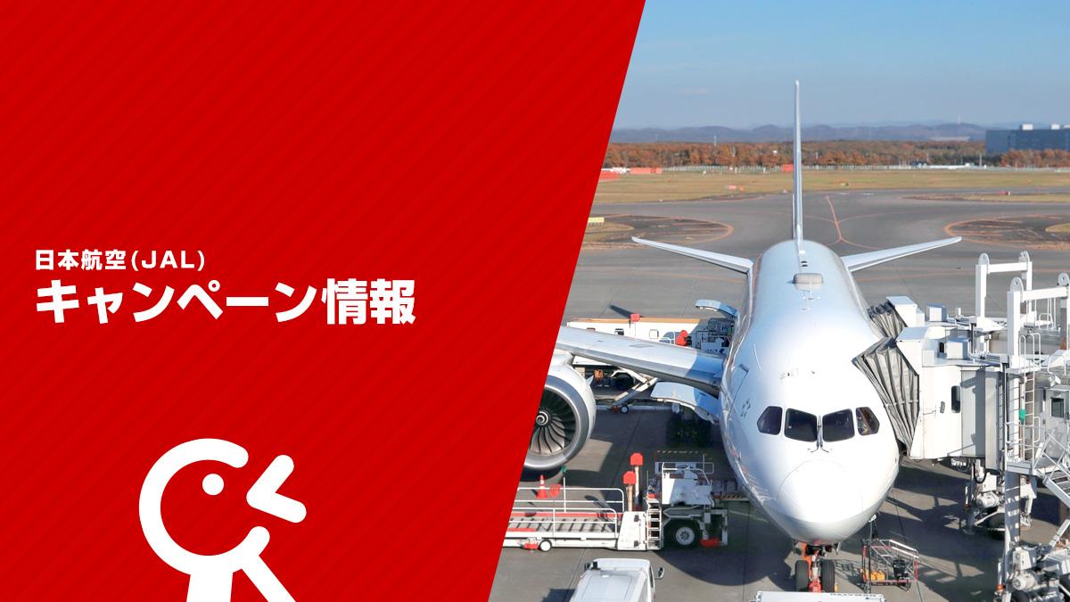 JAL キャンペーン情報