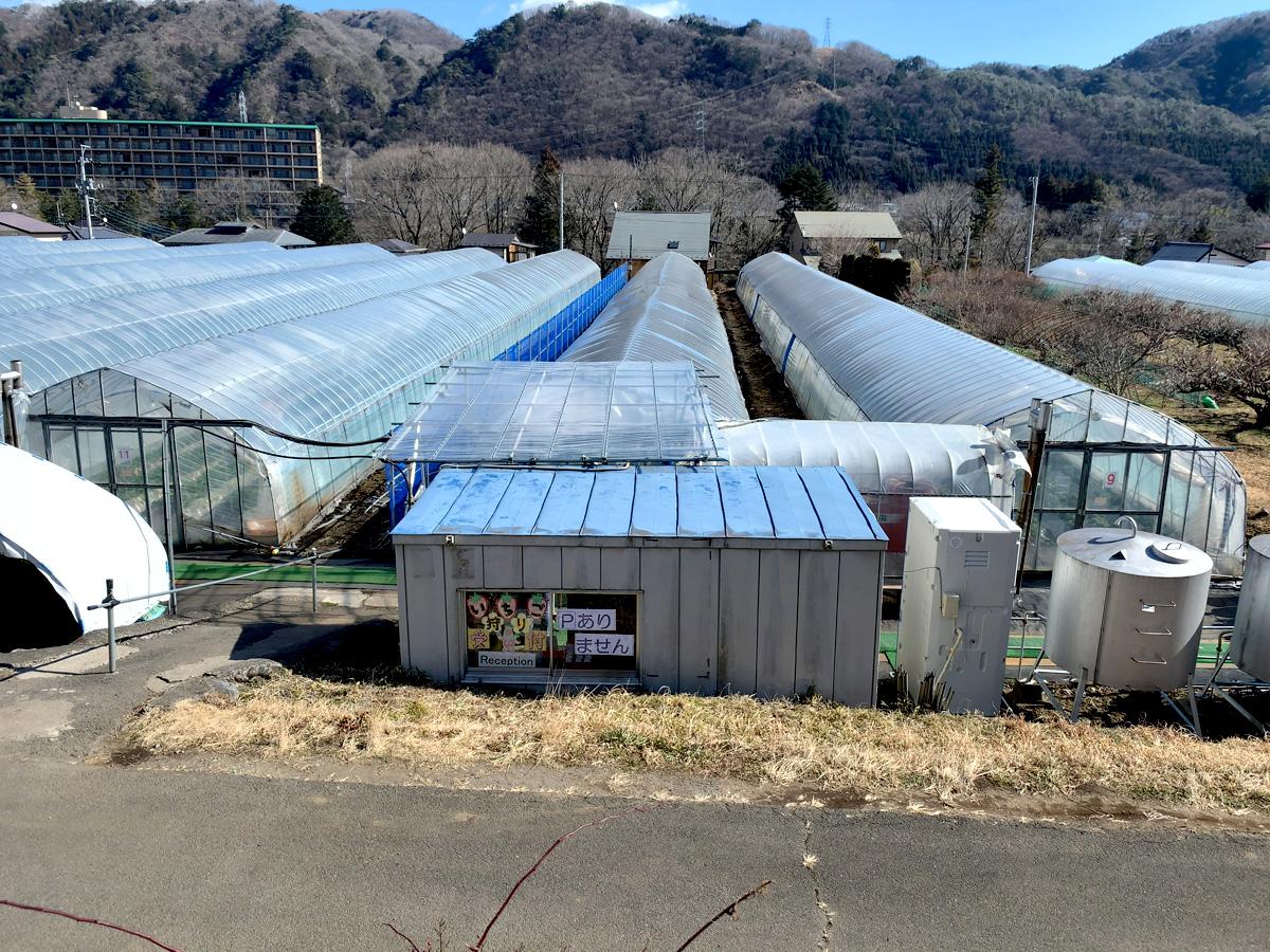 1泊2日鬼怒川旅行 花いちもんめ いちご畑