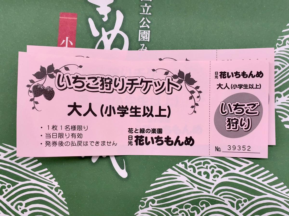 1泊2日鬼怒川旅行 花いちもんめ チケット