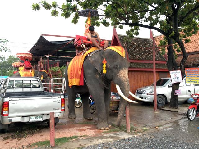 thai20151109-17